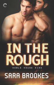 Book Cover: In the Rough